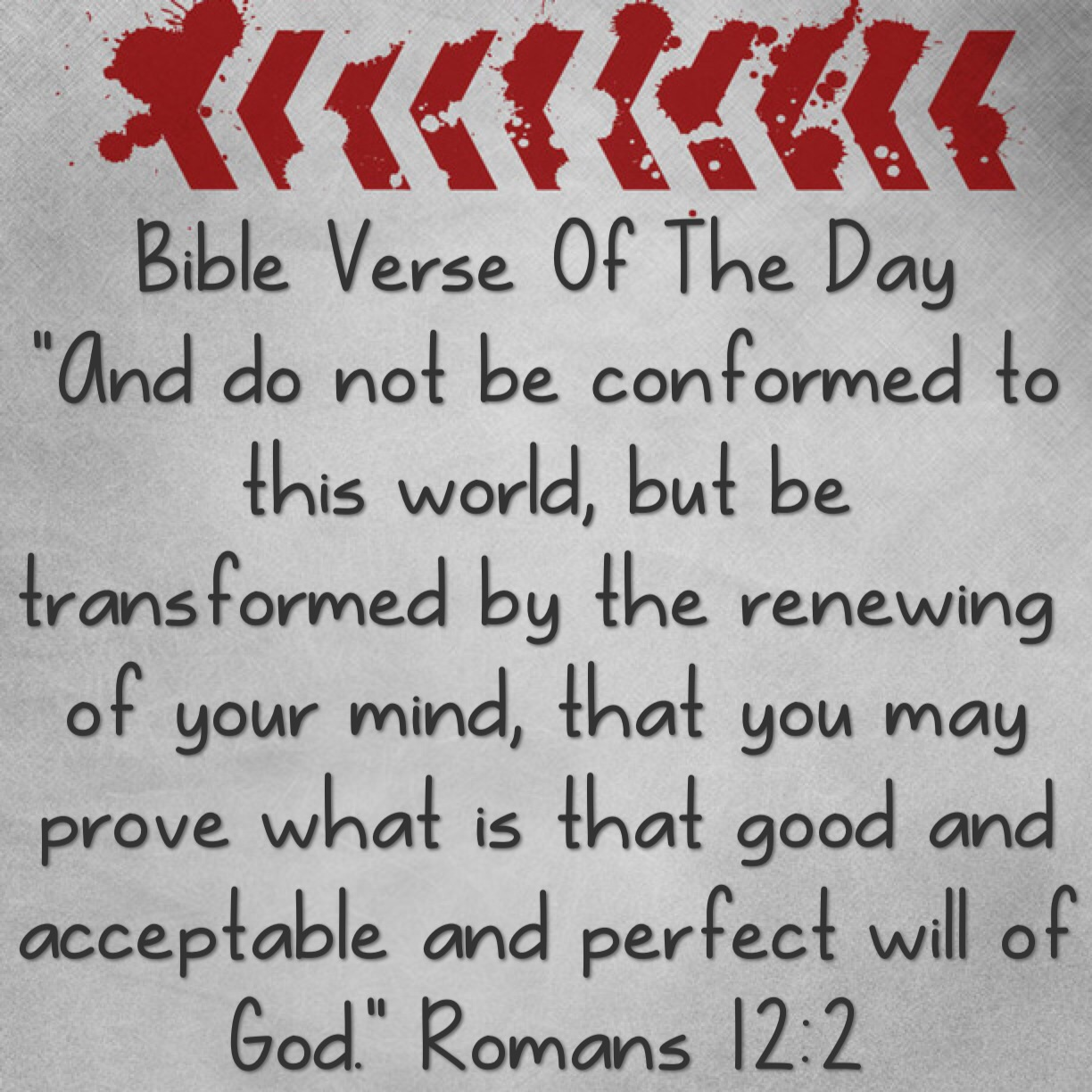 """Bible Verse Of The Day- """"What Is Your Mind Set On"""""""