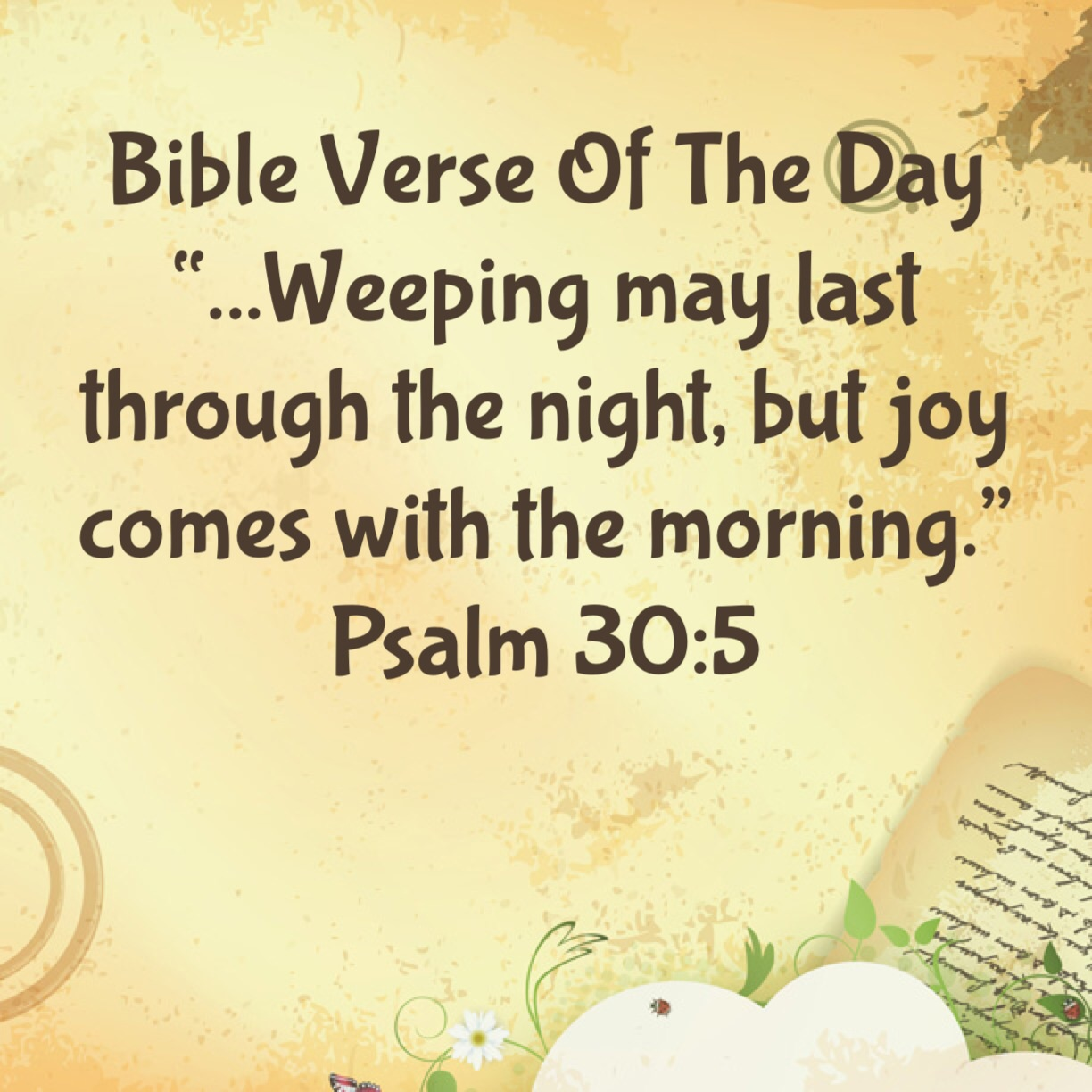 """Bible Verse Of The Day """"Where Is Your Joy?"""" 